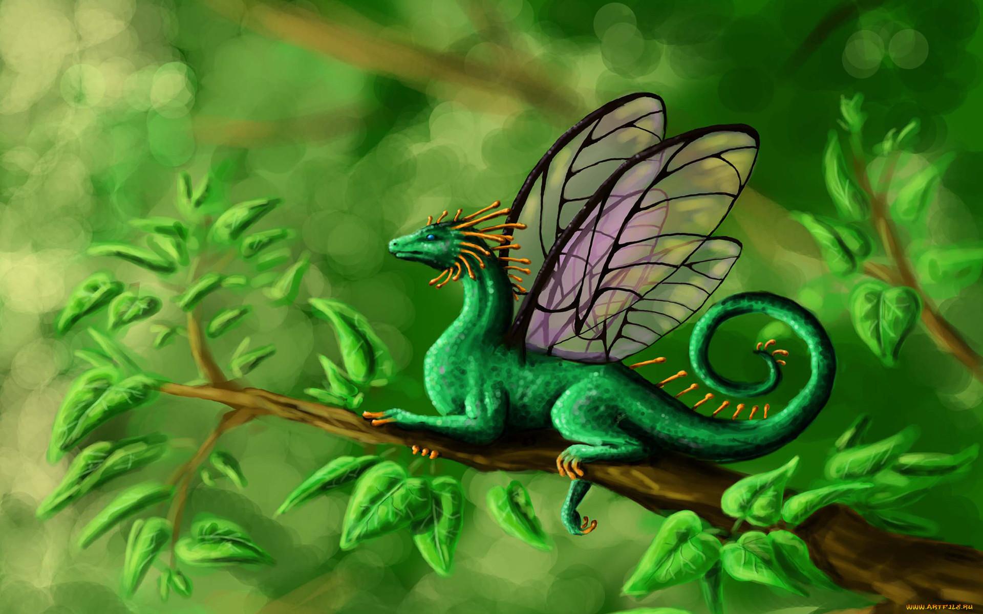 драконы сказочные волшебные картинки если это готическое